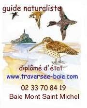 logo didier lavadoux guide mont saint michel